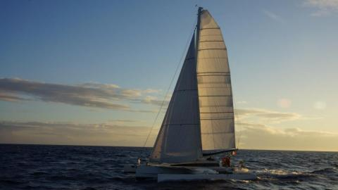 Trimaran Paul Lucas: En navigation au près