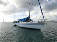 Wauquiez Centurion 36 : Au mouillage en Martinique
